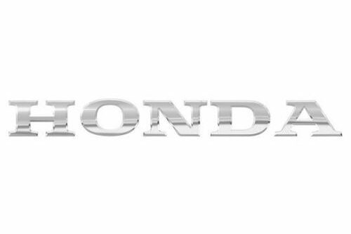2016 2017 2018 2019 Honda Pioneer 1000 Gloss Gray Line Flag Hood Decal Graphic